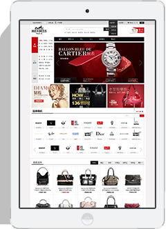 专业的济南网站建设着陆页面设计